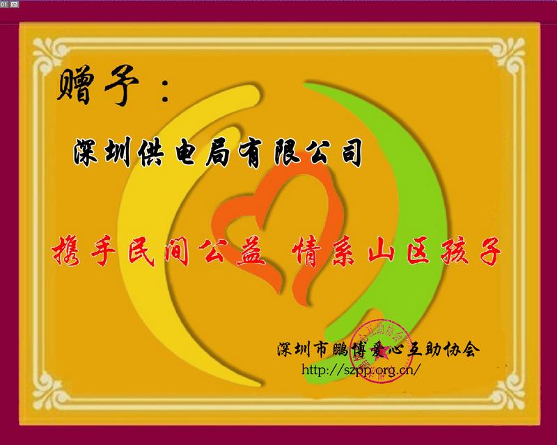 深圳供电局.jpg